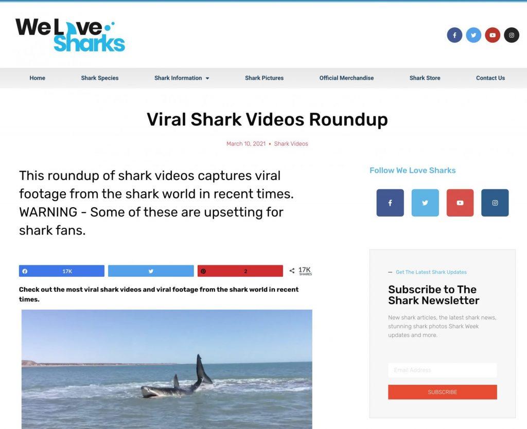 Screenshot of the We Love Sharks website